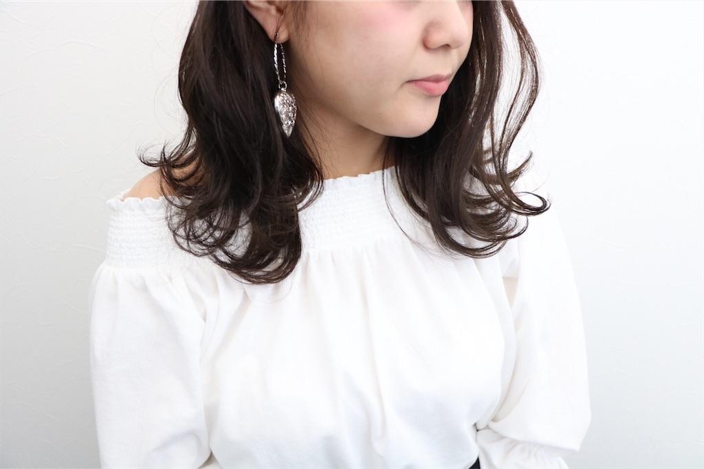 f:id:Ryoheishimizu:20170503201142j:image