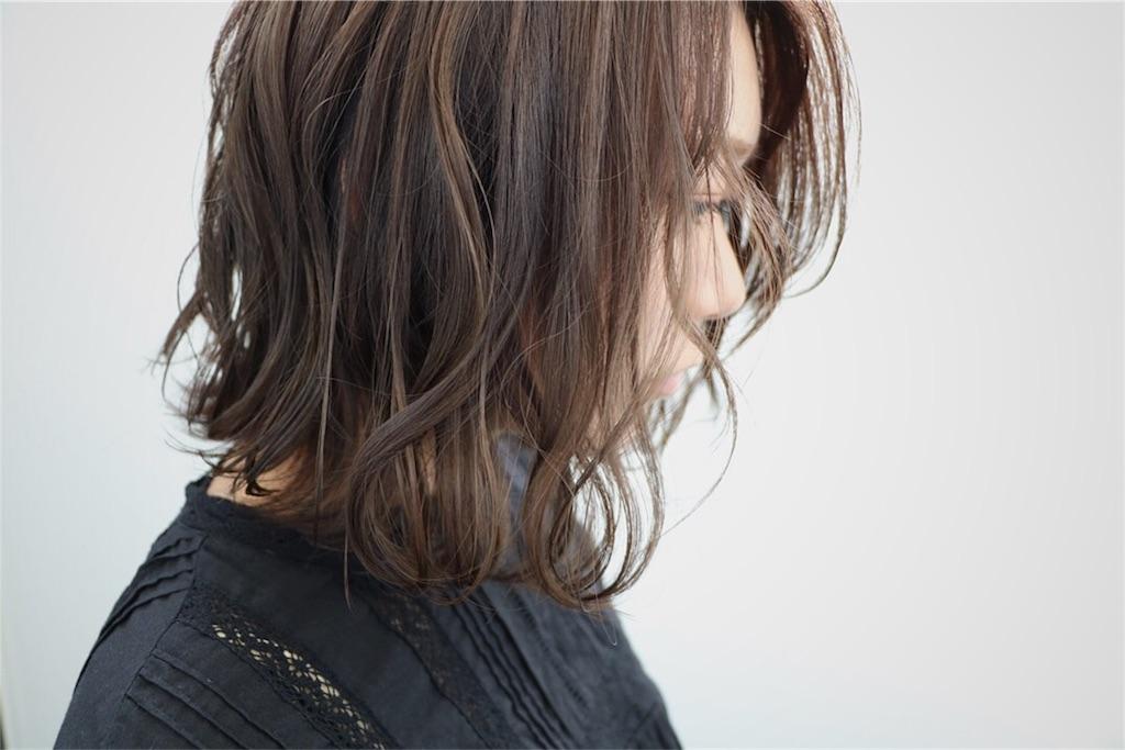 f:id:Ryoheishimizu:20170503221521j:image