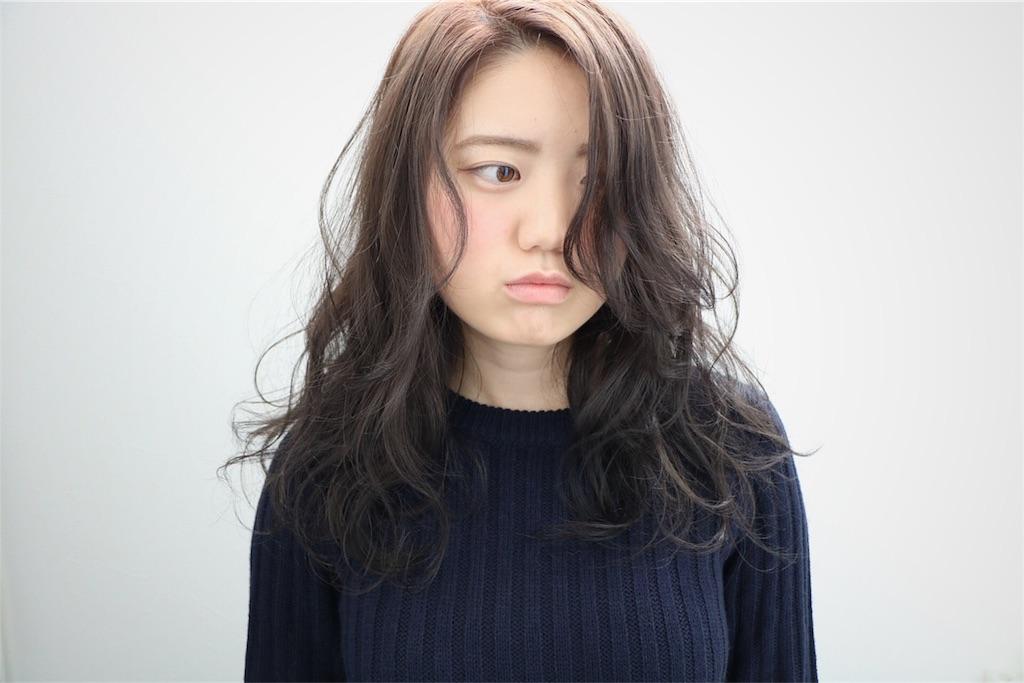 f:id:Ryoheishimizu:20170503221613j:image
