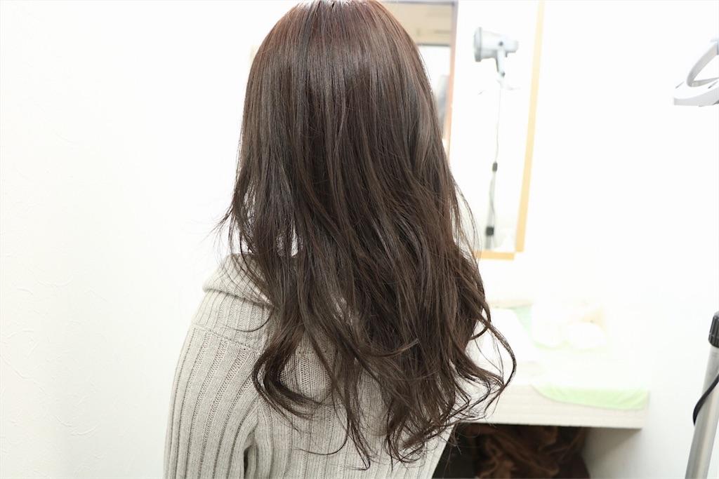 f:id:Ryoheishimizu:20170503221813j:image