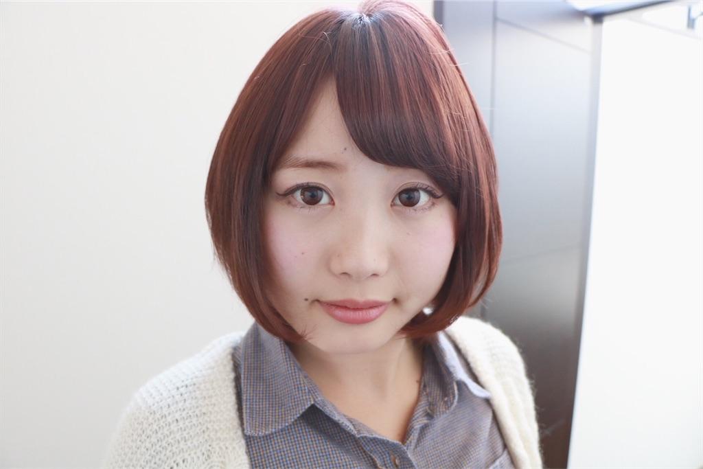 f:id:Ryoheishimizu:20170503222100j:image