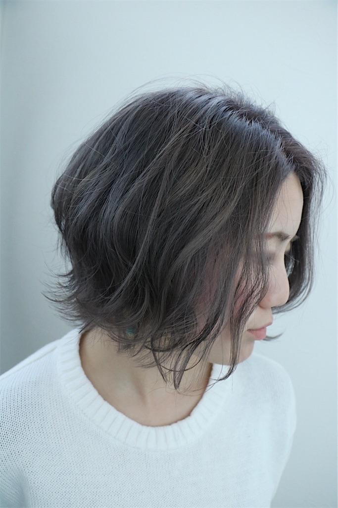 f:id:Ryoheishimizu:20170503222229j:image