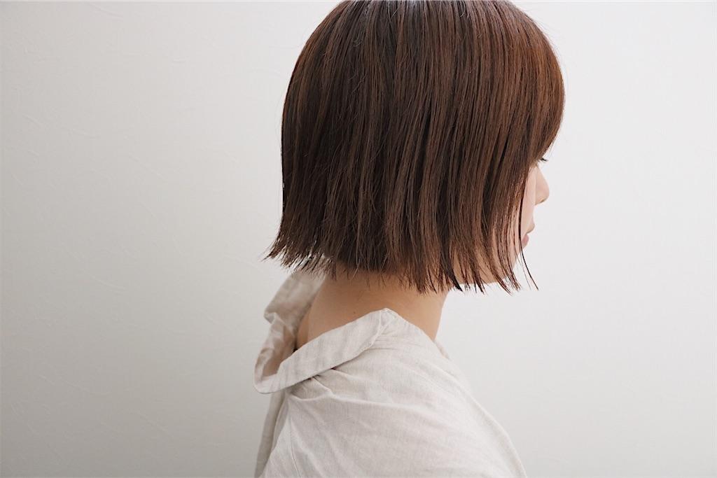 f:id:Ryoheishimizu:20170523200945j:image