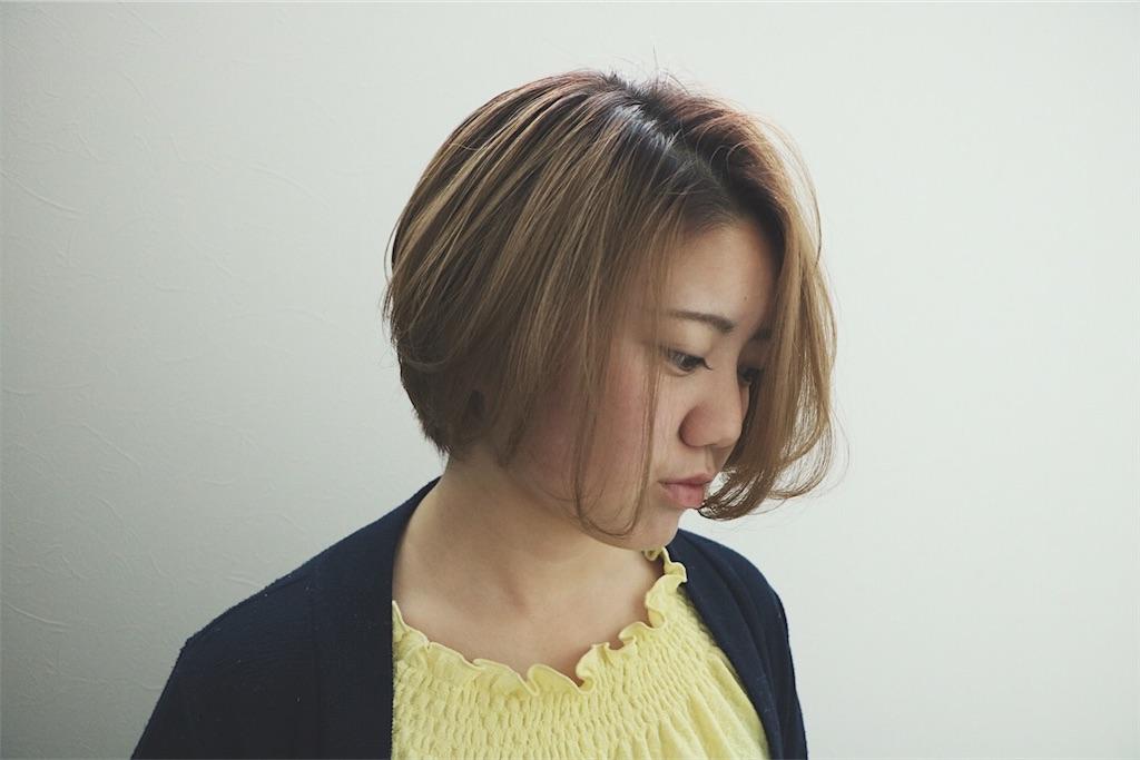 f:id:Ryoheishimizu:20170609205802j:image