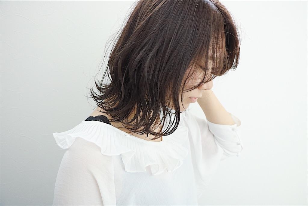 f:id:Ryoheishimizu:20170615082243j:image