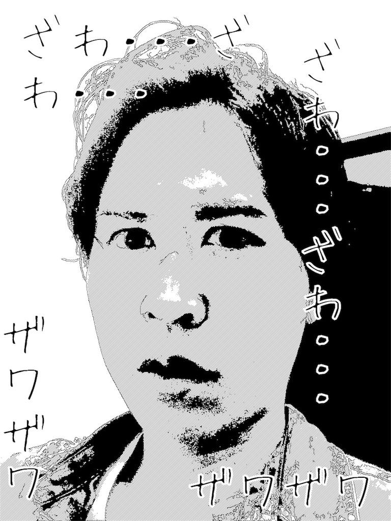 f:id:Ryoheishimizu:20170622102612j:image