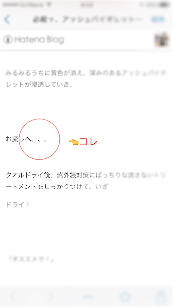 f:id:Ryoheishimizu:20170623082801j:image