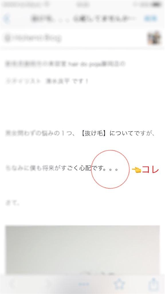 f:id:Ryoheishimizu:20170625072330j:image