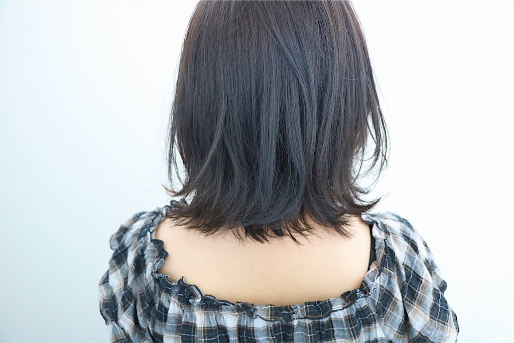f:id:Ryoheishimizu:20170723075019j:image