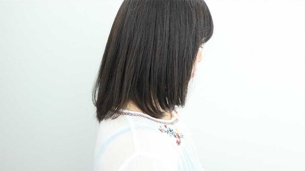 f:id:Ryoheishimizu:20170802075842j:image