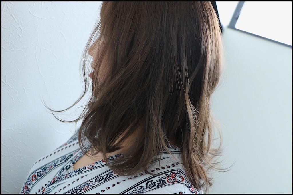 f:id:Ryoheishimizu:20170802192729j:image