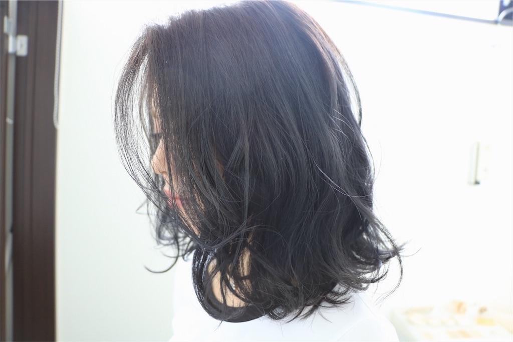 f:id:Ryoheishimizu:20170812075808j:image