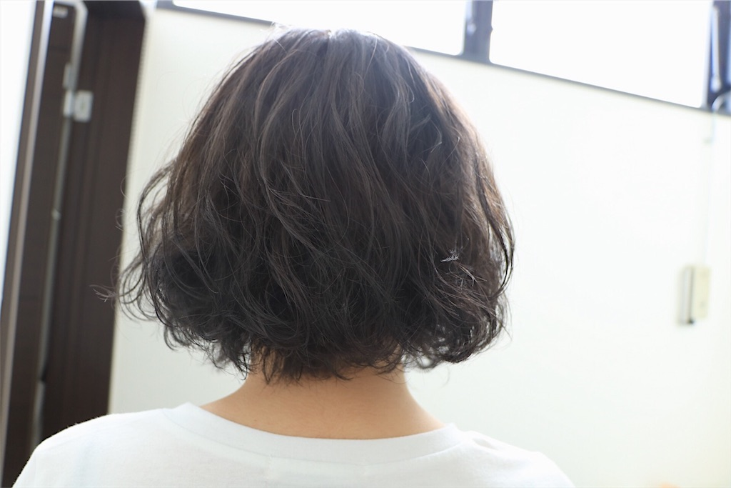 f:id:Ryoheishimizu:20170812080615j:image