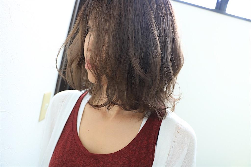 f:id:Ryoheishimizu:20170824215617j:image