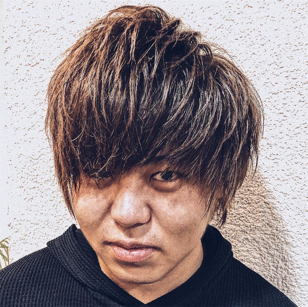 f:id:Ryoheishimizu:20171122203208j:image