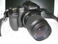 [Camera] 撮影:Canon IXY Digital 20IS