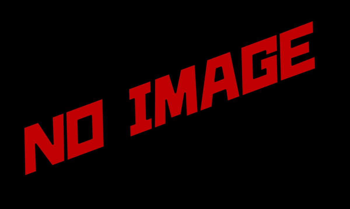 f:id:Ryu-kotsuKing:20210325000827p:plain