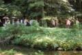 小石川植物園 2010/07/24小石川植物園 2010/07/24