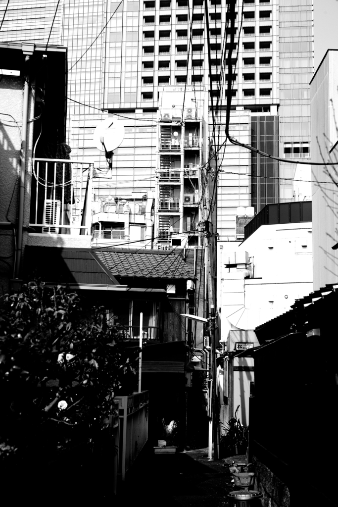 f:id:RyuYudai:20170415084008j:plain