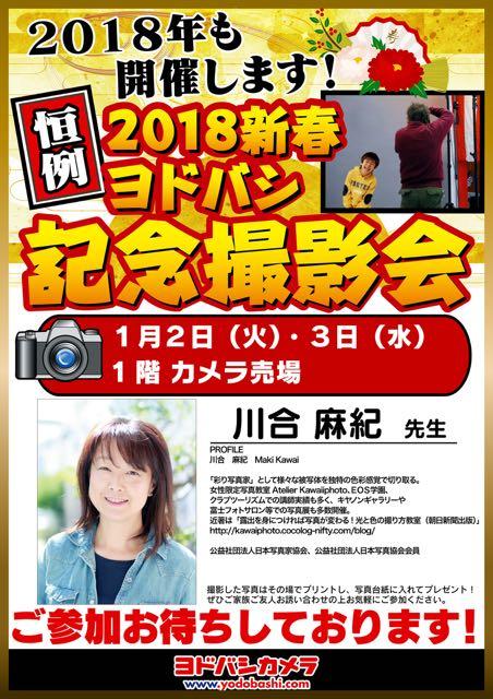 f:id:RyuYudai:20171228151244j:plain