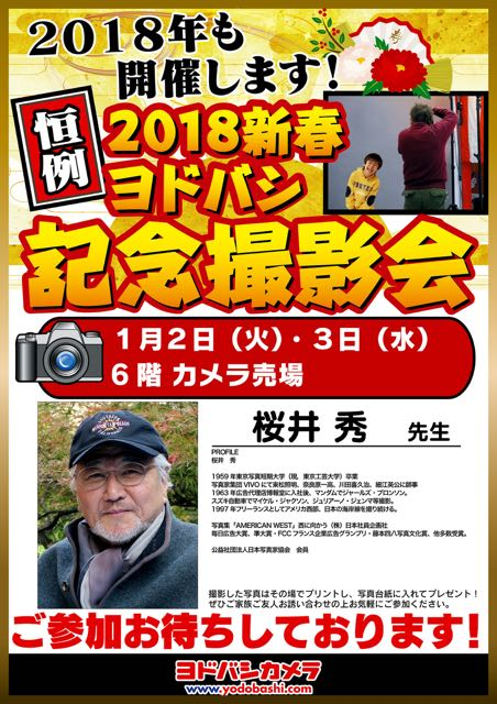 f:id:RyuYudai:20171228151321j:plain