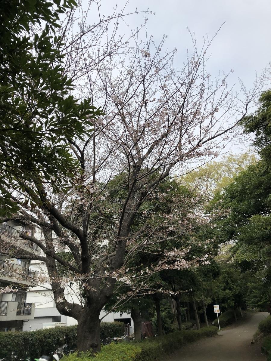f:id:Ryugnan:20190330233842j:plain