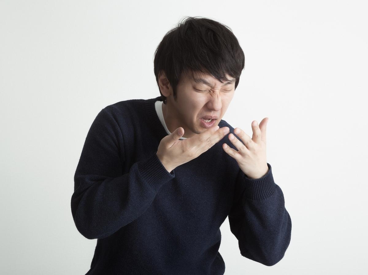 f:id:Ryumuscle:20201229173647j:plain