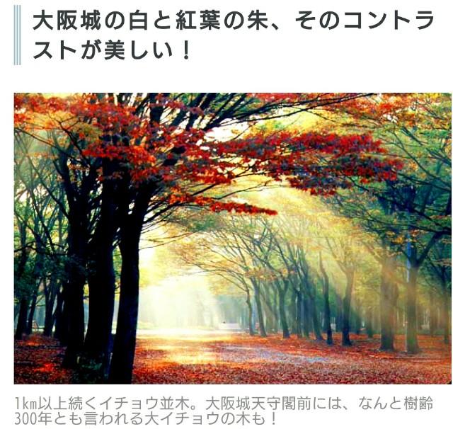 f:id:SAKI001:20191121072318j:image