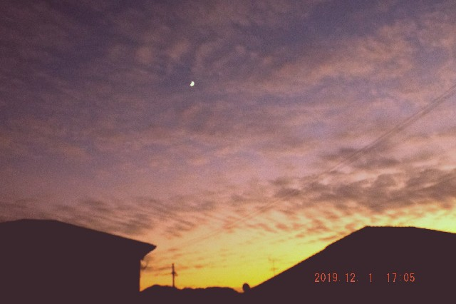 f:id:SAKI001:20191201192307j:image