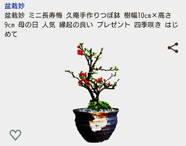 f:id:SAKI001:20200115121120j:image