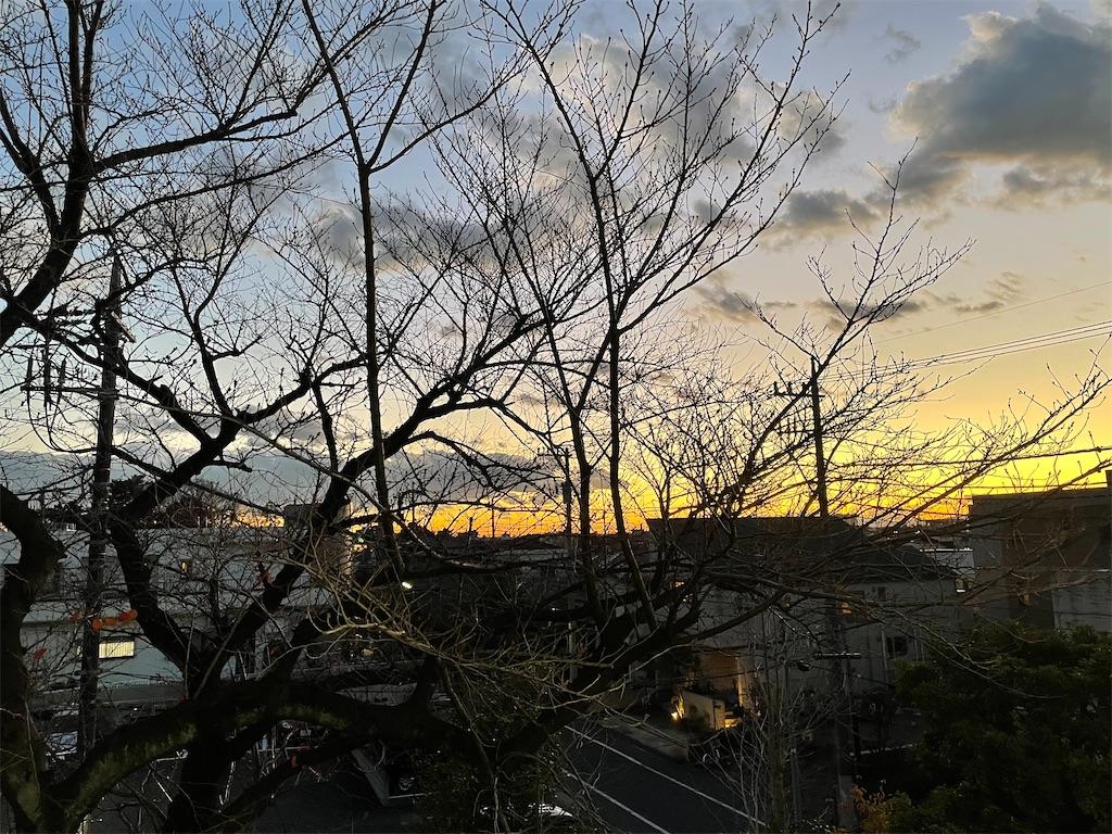 f:id:SAKU_YA:20201220121208j:image