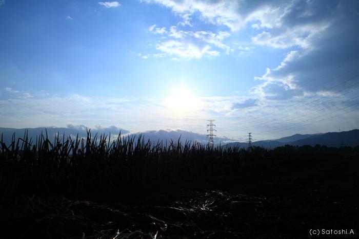 f:id:SATOSHI_A:20071020075009j:image