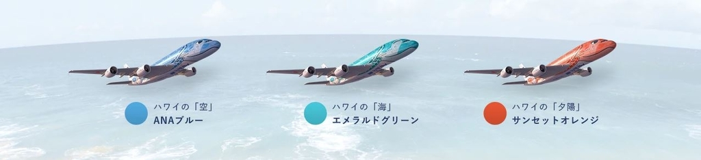 FLYING HONU 空 海 夕陽