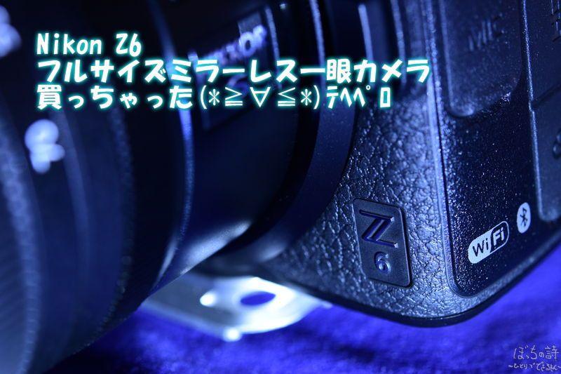 Nikon Z6 フルサイズミラーレス一眼表紙