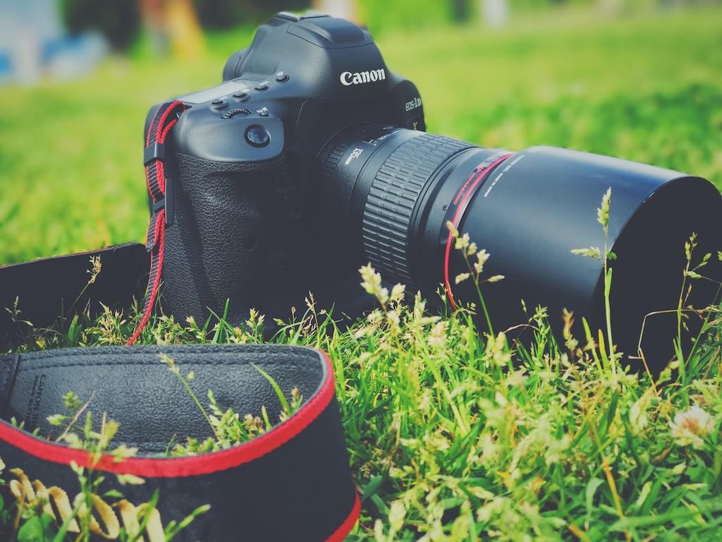 草むらと一眼レフカメラ