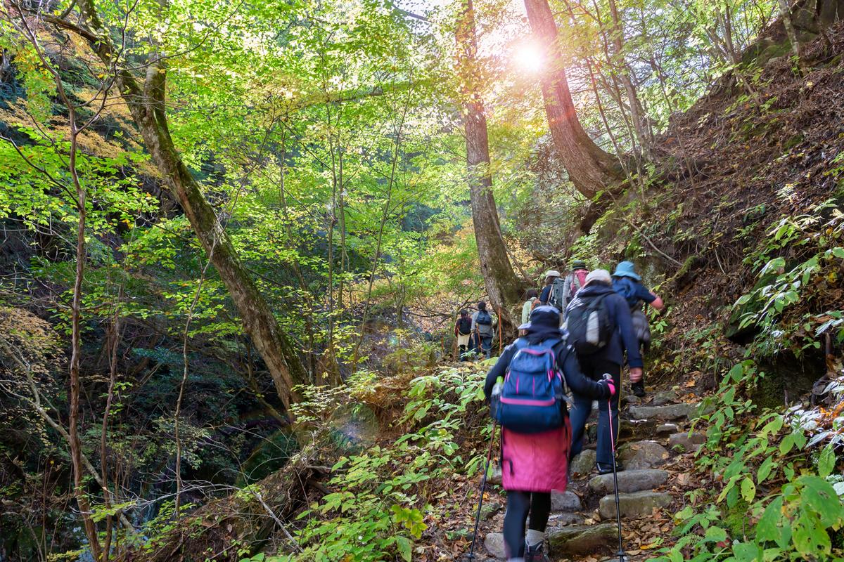 山歩きする人たち