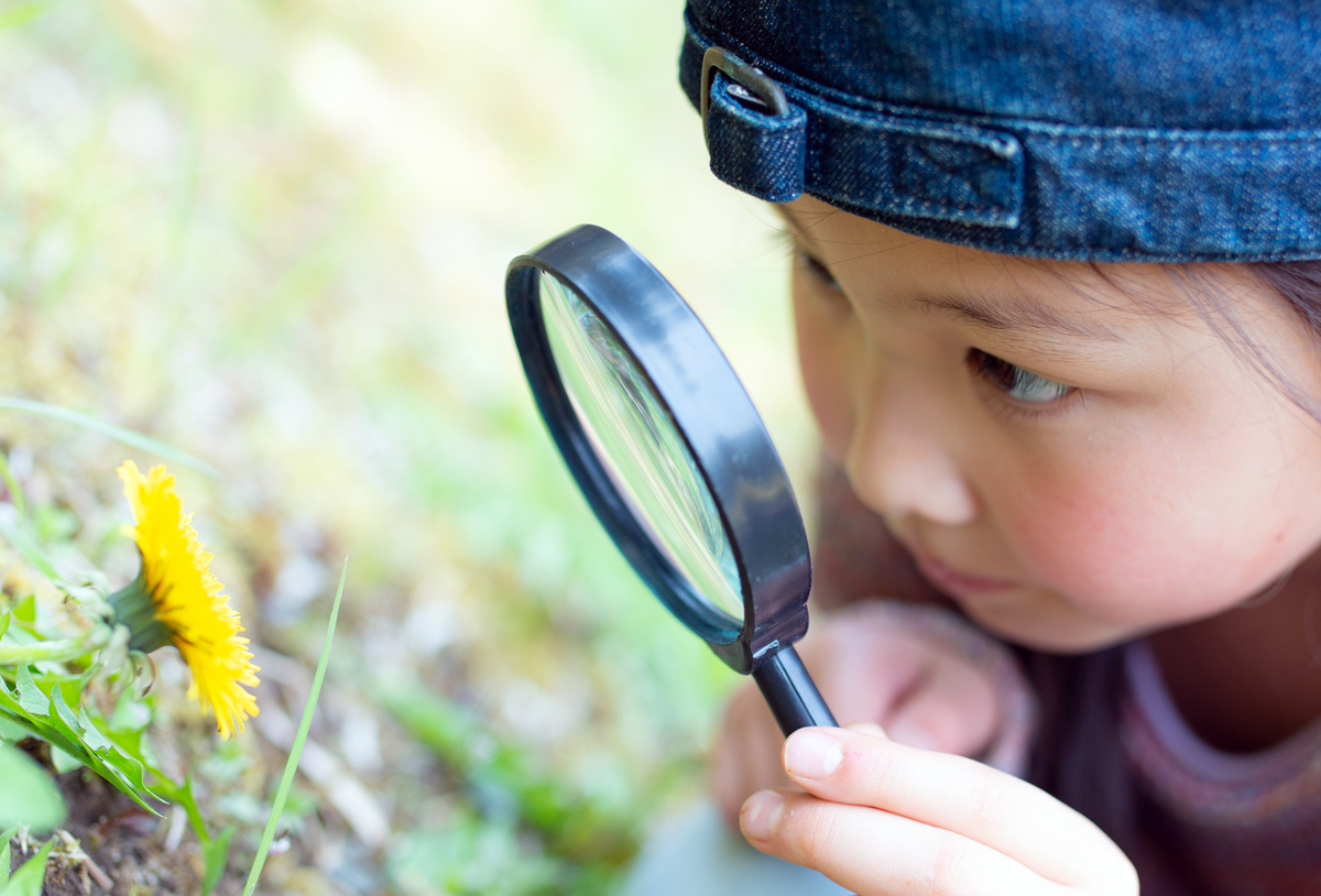 探求する子ども