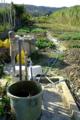 揚水機のある野菜畑