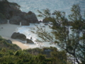 宮城島の海岸
