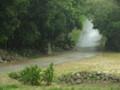 ノロ屋敷跡前の道