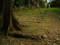 佐敷上グスクの石段の遺構