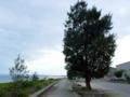 伊舎堂の海岸