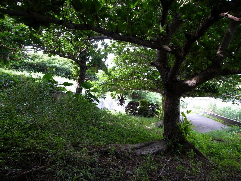 f:id:SQB:20100801111049j:image