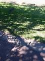 宮城公園にて