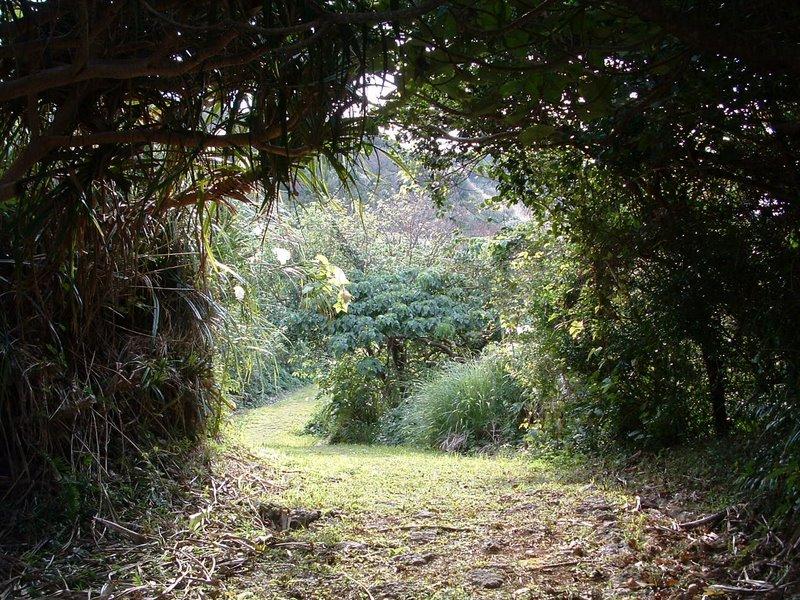 f:id:SQB:20110121210040j:image