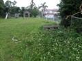 古堅農村公園