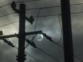 日食(2012年05月21日)
