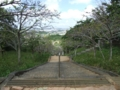 八重瀬公園にて