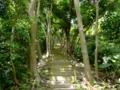 三津武嶽への道