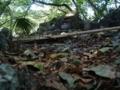 南山城跡の拝所